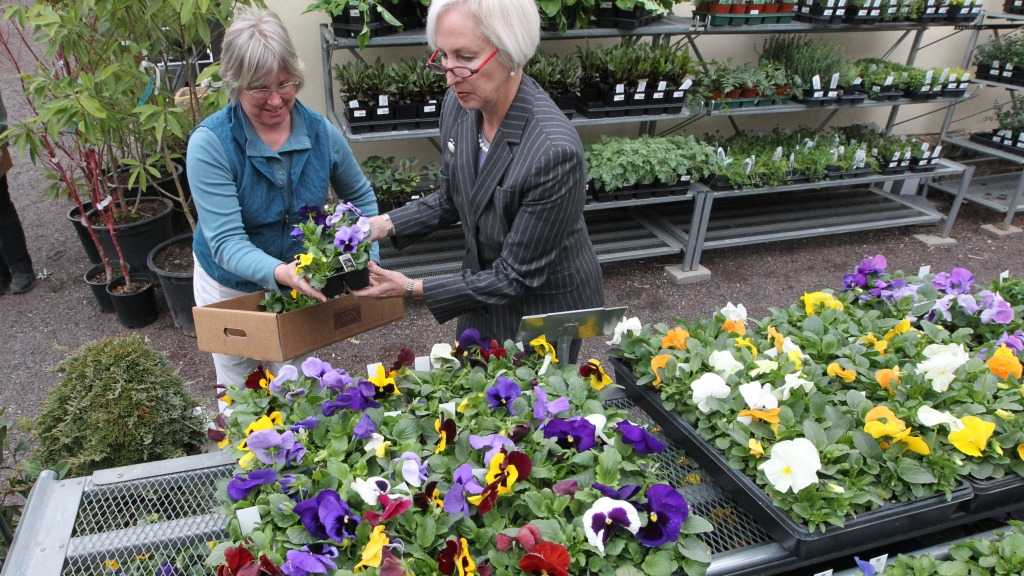 Top Garden Centers In St Louis Cbs