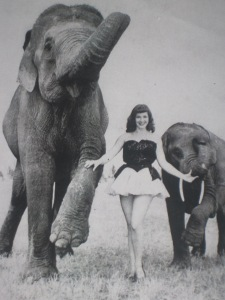 "Elizabeth ""Bunny"" Herring and friends in Ringling Bros. Barnum & Bailey Circus"