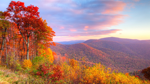 fall foliage   east coast destinations  catch 625 x 352 · jpeg